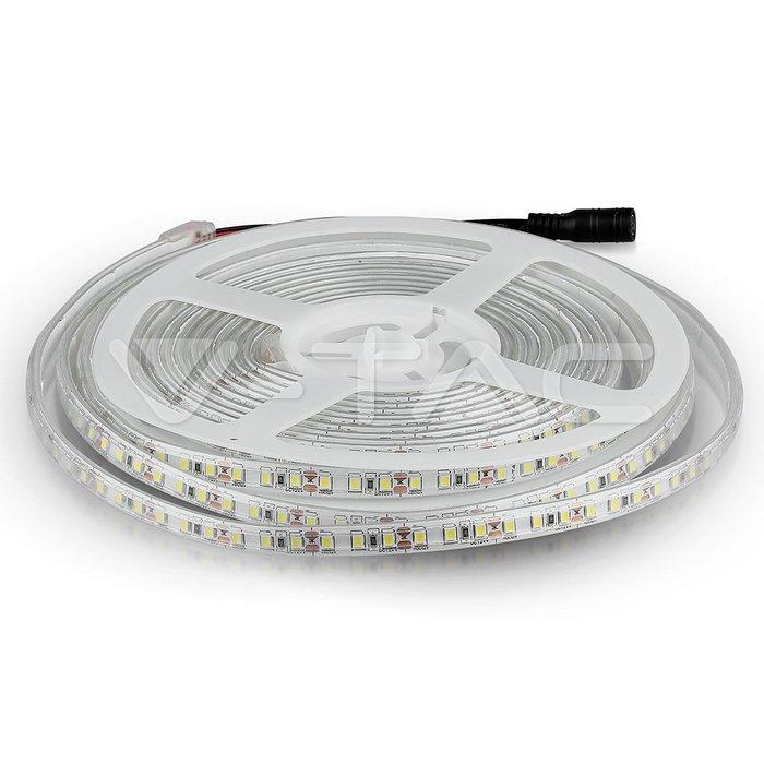 Striscia SMD3528 120 LED/m Bianco freddo IP65